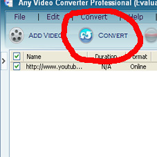 Any Video Converter ( aryousticia )